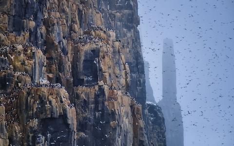 Pass breathtaking mountains and towering cliffs populated by colossal seabird colonies - Credit: KEITH LADZINSKI