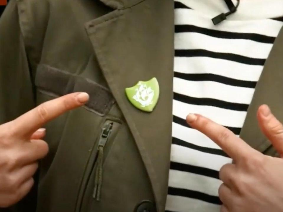 The Blue Peter green badge was launched in 1988 and is awarded to children who have made a positive impact on the environment (BBC/YouTube screengrab)