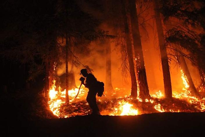 Lassen Hotshot shields his face with his tool as he walks past fireline on the northwest flank above Ruth Valley.