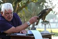 Veteran falcon conservationist Bob Dalton says most species of falcon are either in decline or on the point of being unstable