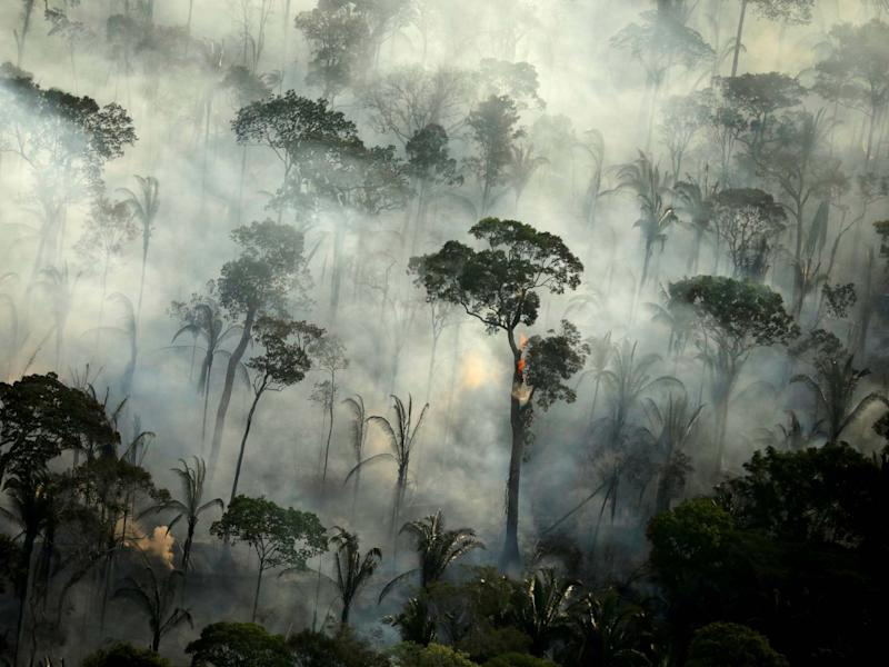 Smoke billows from a fire in an area of the Amazon rainforest near Porto Velho, Rondonia State, Brazil: Reuters