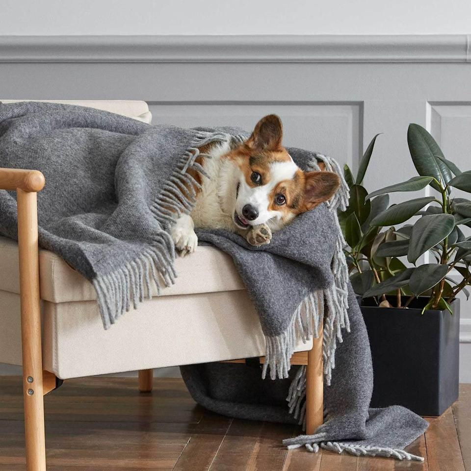 <p>On chilly nights, turn to this cozy <span>Throw Blanket</span> ($189).</p>
