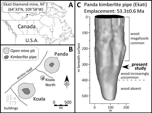 A. Location of the Ekati diamond mine. B. Situation of the Panda kimberlite in relation to other pipes that comprise the property. C. Morphology of the Panda kimberlite pipe and occurrence of wood.