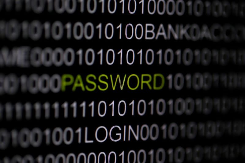 FILE PHOTO: The word 'password' is pictured on a computer screen in this picture illustration taken in Berlin