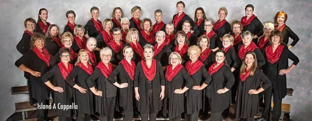 Members of Island A Capella had to practise on Zoom before they could gather in person again last fall. (Harmony Inc. Area 1 - image credit)