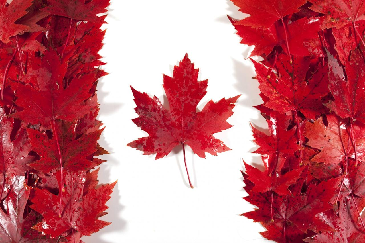 <p>Rank 7: Canada. Percentage of English speakers: 85.18. Total number of English speakers: 25,246,220. Photo – Getty </p>