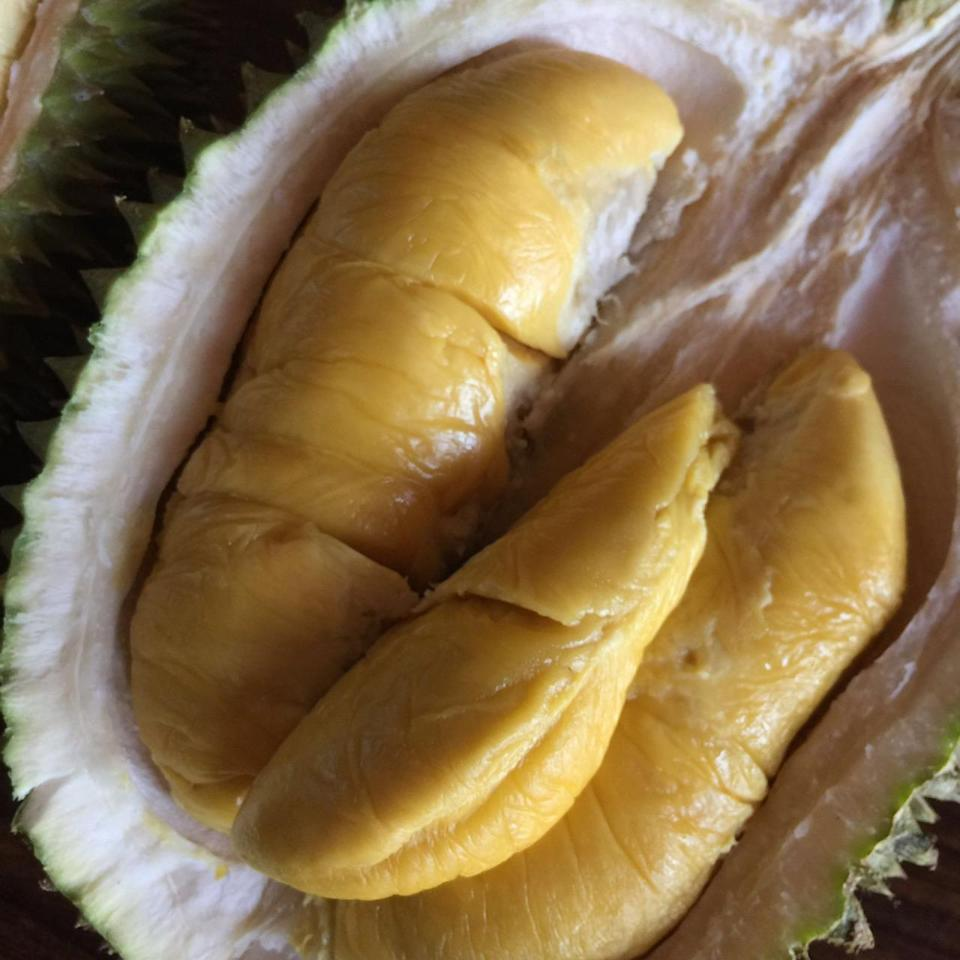 From Pahang, Malaysia, the Mao Shan Wang has a creamy texture and bittersweet taste that makes it extremely popular. Unfortunately, due to the demand for this durian, it is the most expensive in the market right now. (Photo by: Resorts World Sentosa)