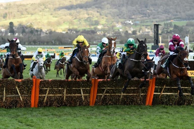 Racing Could Return Within a Week of Government Go Ahead