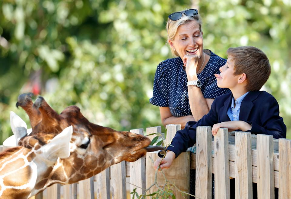 BRISTOL, UNITED KINGDOM - JULY 23: (EMBARGOED FOR PUBLICATION IN UK NEWSPAPERS UNTIL 24 HOURS AFTER CREATE DATE AND TIME) Sophie, Countess of Wessex and James, Viscount Severn feed a giraffe as they visit The Wild Place Project at Bristol Zoo on July 23, 2019 in Bristol, England. (Photo by Max Mumby/Indigo/Getty Images)