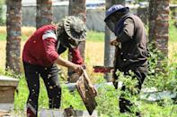 Storms, warmer winters and unpredictable rains have hit Kashmir production in recent years (AFP/NARINDER NANU)