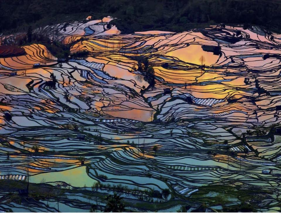 <p>'Tthe Yuanyang rice terraces near the Ailao Mountains, Yunnan province, China.' (Masters of Landscape Photography) </p>