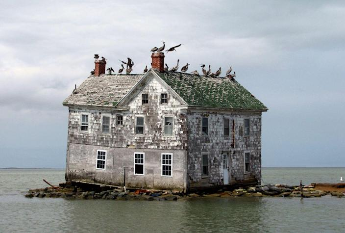 <p>This house was all that's left of what was once a small island colony in the Chesapeake Bay. Thanks to erosion of the island's coast, inhabitants were pushed off the island. This house ultimately collapsed as well in 2010. </p>