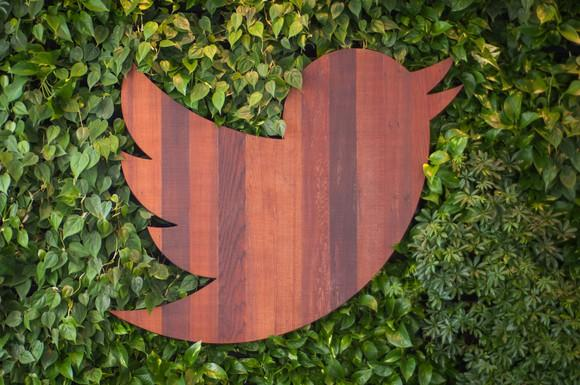 Wood carved Twitter bird on wall of ivy.