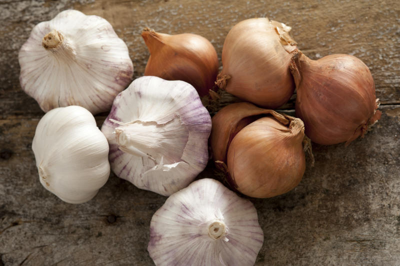 Fresh raw whole garlic bulbs and brown onions, both of the Allium family, on a rustic wooden table viewed from overhead