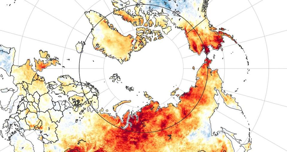 A map showing land surface temperature anomalies from 19 March to 20 June 2020. Reds depict areas that were hotter than average for the same period from 2003-2018; blues were colder than average.