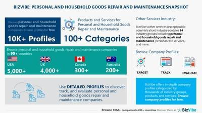 Snapshot of BizVibe's personal and household goods repair and maintenance industry group and product categories.