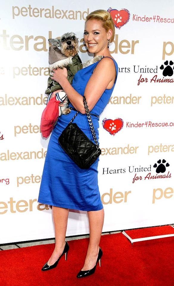 """Katherine Heigl told """"Access Hollywood"""" on Wednesday that adopting a child is something she and husband Josh Kelley are """"looking into doing in the future."""" Gregg DeGuire/<a href=""""http://www.wireimage.com"""" target=""""new"""">WireImage.com</a> - October 22, 2008"""