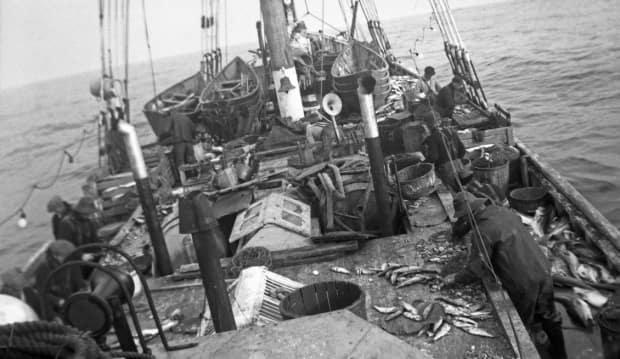 Fishermen bait their trawl lines aboard a banking schooner in the 1940s. Note the stacked dories on deck. (Robert W. Stoodley Photography - image credit)