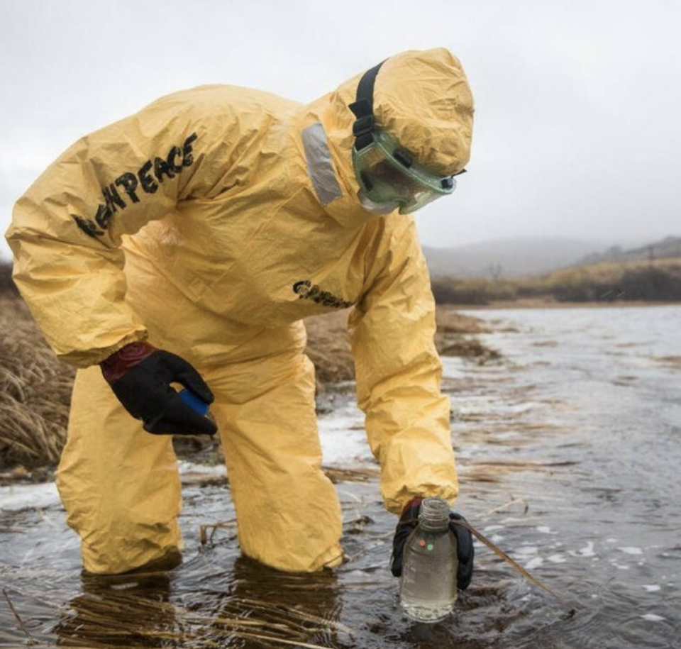 The cause of the widespread pollution off the coast of Kamchatka is still unknown, despite Greenpeace conducting extensive tests. Source: Greenpeace