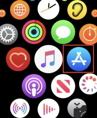 Apple Watch subs
