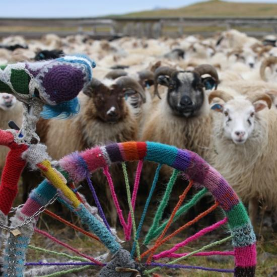 """<div class=""""caption-credit""""> Photo by: flickr: Iceland</div>I'll take that crochet wheel cozy and raise you an entire knitted bike cozy."""