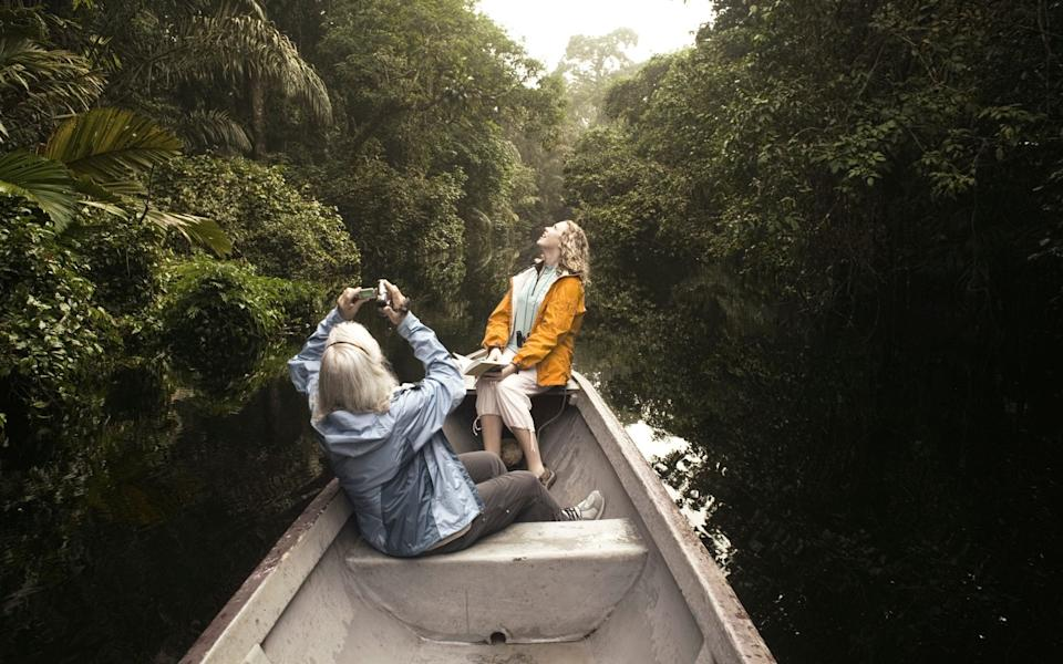 Tortuguero National Reserve - Getty