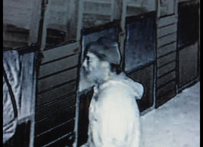 """An owner and breeder of world class miniature horses in Florida is hoping video surveillance footage will help identify the person suspected of sexual assaulting several of her horses and killing her watch dog.    The brutal sexual assaults have been ongoing since May 2012, according to the horse owner, Abby Conder, of Marion County.    On Dec. 30, 2012, Conder got her first glimpse of the alleged perpetrator when she reviewed video footage from inside her barn that was recorded earlier that morning.    """"Someone's got to know this man,"""" Conder said. """"He's been in this area at least 8 months now. These are babies I have raised and it's affected them psychologically. It's hard to get in a stall with them and I can't get near their rear ends to put a harness on them.""""    Anyone who recognizes the subject in the video or has information about the animal sexual assaults is asked to contact the sheriff's department at 352-732-8181."""