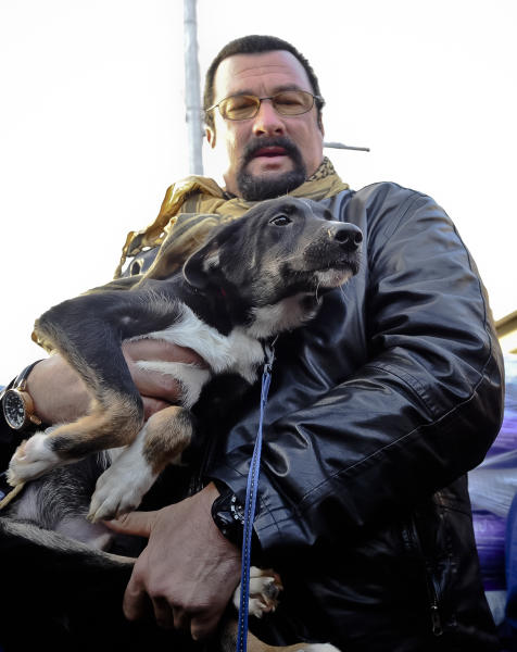 A picture taken on Sunday, Nov. 17, 2013 shows U.S. actor Steven Seagal holding Grivei, a stray dog he adopted from the Dogtown dog shelter in Uzunu, south of Bucharest, Romania. The dogs have been in the news after a 4-year-old boy was fatally mauled by a stray in August and Parliament passed a law allowing for Bucharest's 64,000 street dogs to be euthanized. Seagal adopted the 7-month-old black puppy in the long distance adoption program, which costs 60 lei ($18) a month. The dog will remain at the shelter. (AP Photo/Cristian Nistor/Agerpres)