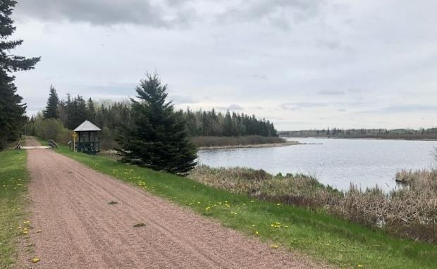 While the Island Walk sticks mostly to the coast, it has much more than that to offer, says Arsenault. (Angie Arsenault/Twitter - image credit)