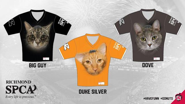 "( <a href=""https://www.milb.com/richmond/news/flying-squirrels-to-wear-special-jerseys-on-caturday-april-6-featuring-cats-available-for-adoption-at-richmond-spca/c-303237932"" rel=""nofollow noopener"" target=""_blank"" data-ylk=""slk:MILB"" class=""link rapid-noclick-resp"">MILB</a>)"