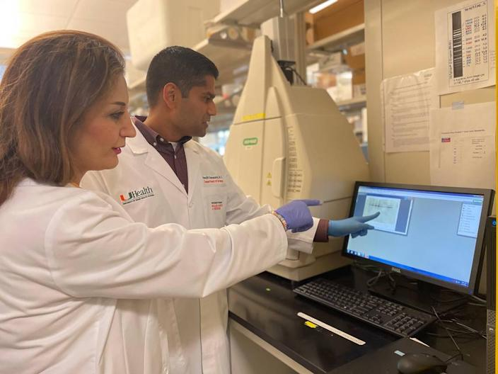 Dr. Kajal Khodamoradi and Dr. Ranjith Ramasamy are analyzing data for their University of Miami Miller School of Medicine study on whether COVID-19 vaccines affect male fertility.