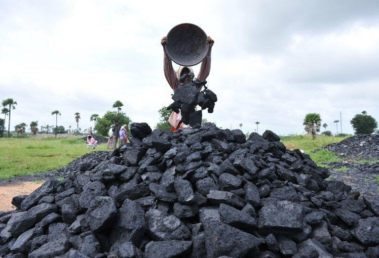 Labourers pile up coal at a coal field on the outskirts of Hyderabad, southern India, on September 5, 2012
