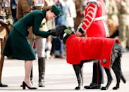 <p>Forget royal duties. Kate Middleton knows there's nothing more important than stopping to pet a cute dog. The Duchess gave a Domhnall the Irish Wolfhound a pat at a St. Patrick's Day ceremony in 2019. </p>
