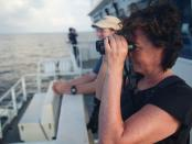Whale sightings aid quest to protect wildlife in Indian Ocean oasis