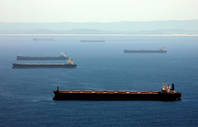 FILE PHOTO: A general view shows container ships waiting to be filled with coal at the coastal city of Newcastle