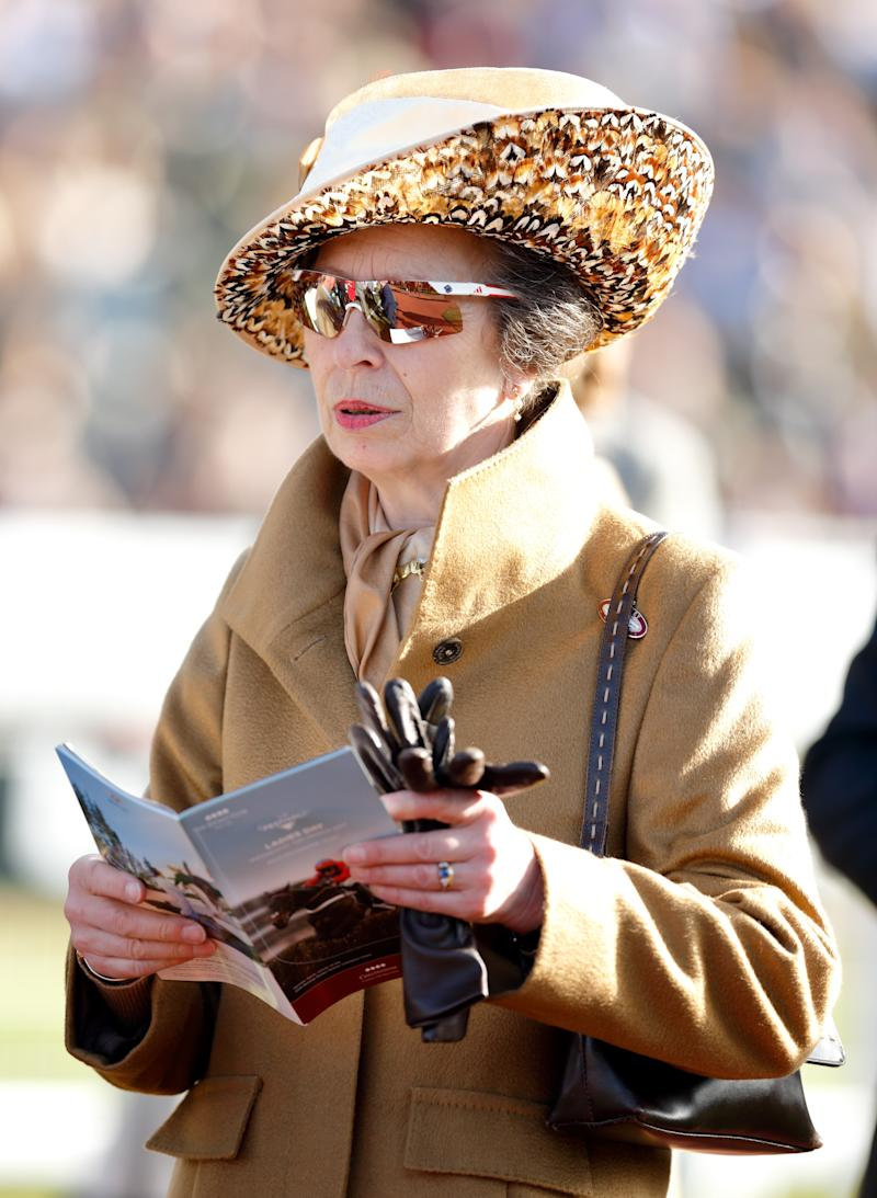 Princess Anne at the race course of the Cheltenham Festival, March 2017.