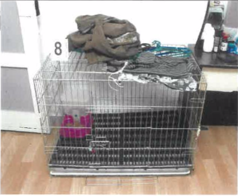 The pet cage which Azlin Arujunah and Ridzuan Mega Abdul Rahman allegedly kept their son in. Photo: Court documents