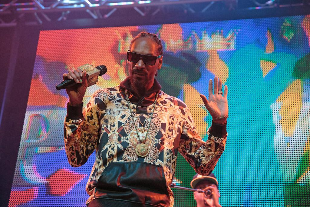 "<p>Snoop is the hip-hop artist with the most noms without a win. He received his first nom for 1993's ""Nuthin' But a 'G' Thang,"" a collabo with Dr. Dre, which was a finalist for Best Rap Performance by a Duo or Group. Snoop, 45, has been a featured artist on two Album of the Year contenders: Katy Perry's 'Teenage Dream' (2010) and Kendrick Lamar's 'To Pimp a Butterfly' (2015). Odd fact: Snoop has never been nominated for Best Rap Album, but he has been nominated for Best Reggae Album (for 2014's 'Reincarnated,' on which he was billed as Snoop Lion). </p>"