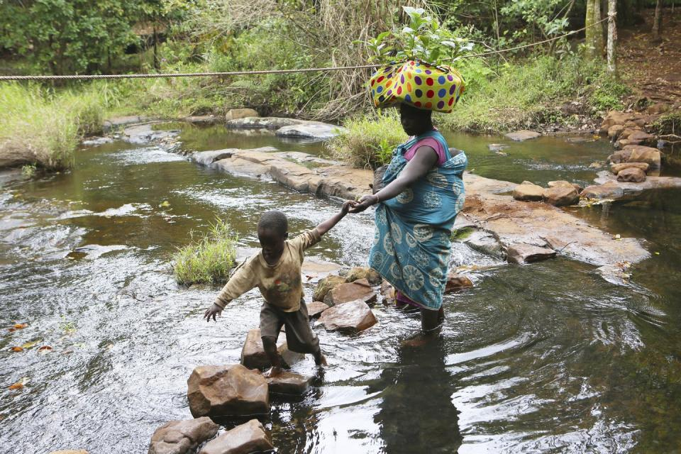 A mother carrying coffee plant seedlings on her head holds her child's hand as they walk on rocks to cross a river.