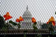 FILE PHOTO: Flowers are placed in security fencing around the U.S. Capitol days after supporters of U.S. President Donald Trump stormed the Capitol in Washington