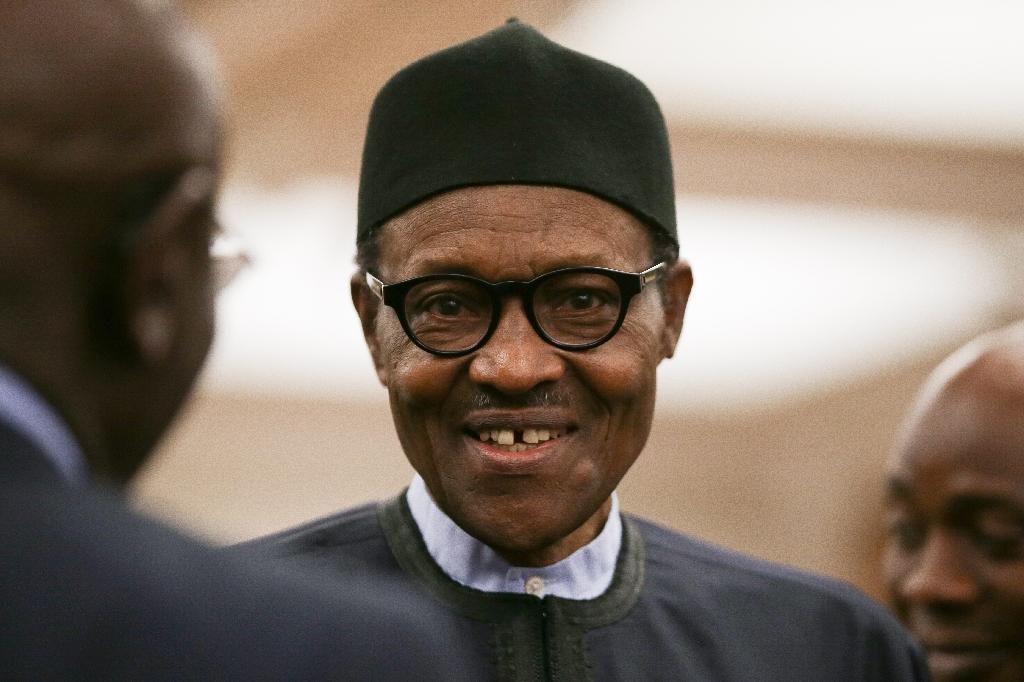 Buhari said many youths did not have a school education and expected the state to provide free housing, health care and education (AFP Photo/Daniel LEAL-OLIVAS)