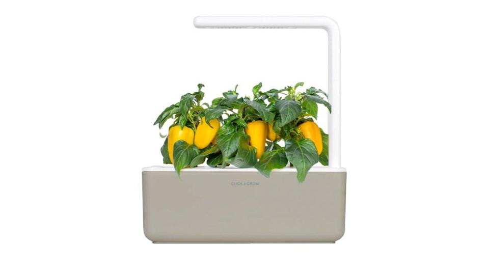 Click and Grow's indoor garden has a 4.8-star rating from Nordstrom shoppers, and it comes in three chic colors.