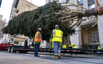 The 2020 Rockefeller Center Christmas tree, a 75-foot tall Norway Spruce that was acquired in Oneonta, N.Y., is prepared for setting on a platform at Rockefeller Center Saturday, Nov. 14, 2020, in New York. (AP Photo/Craig Ruttle)