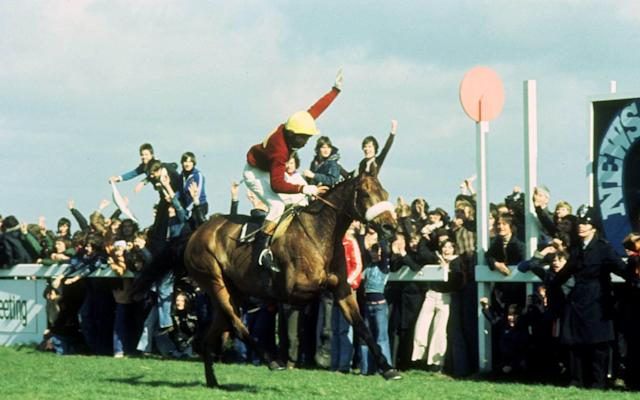 Red Rum, ridden by Tommy Stack, wins the 1977 Grand National - Sporting Pictures