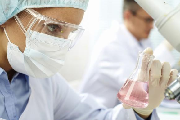 Laboratory worker inspecting a flask with liquid in it.