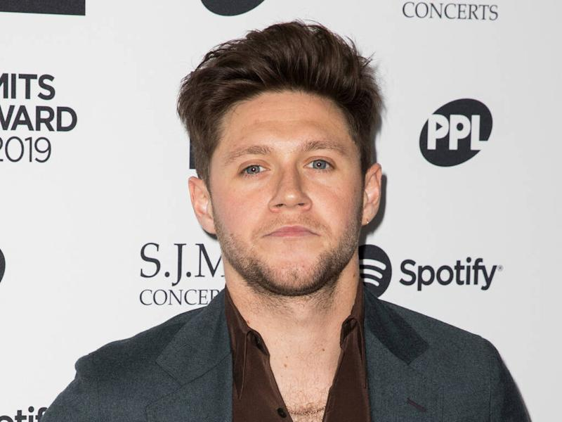 Niall Horan pledges One Direction will 'come back with a bang'