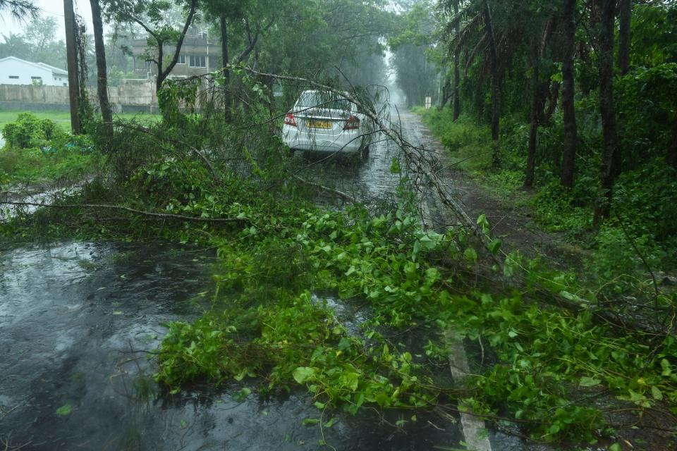A car drives past fallen tree branches along a road ahead of the expected landfall of cyclone Amphan in Digha, West Bengal on May 20, 2020. (Photo by Dibyangshu SARKAR / AFP)