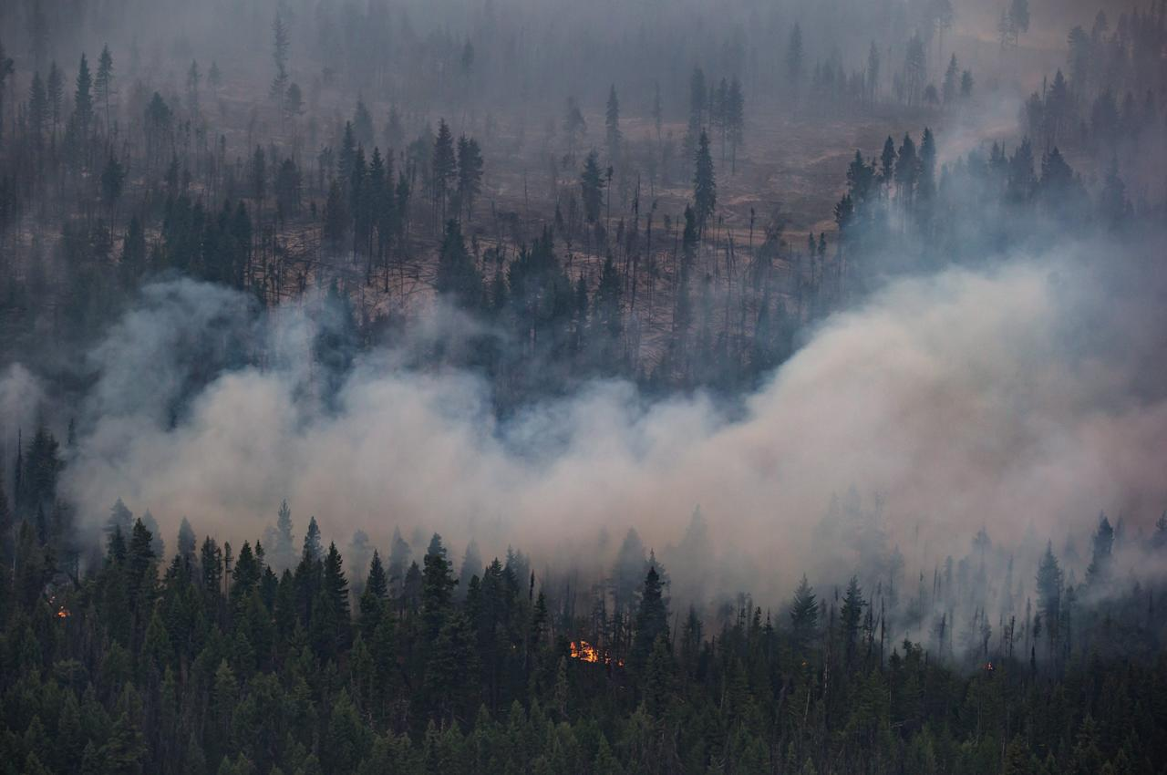 <p>The Shovel Lake wildfire burns near the Nadleh Whut'en First Nation in Fort Fraser, B.C., on Thursday, Aug. 23, 2018.<br />(Photo by Darryl Dyck, The Canadian Press) </p>