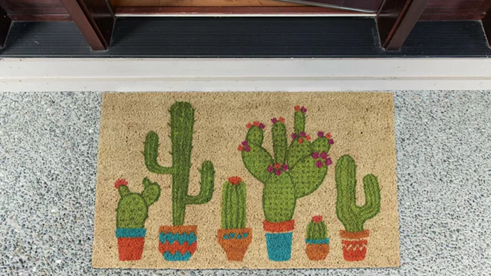 Who wouldn't love to be greeted by cacti?