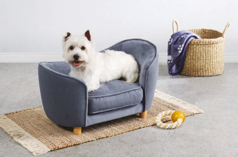 Aldi pampered pooch dog bed special buy